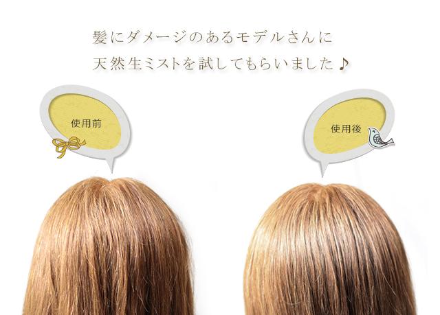髪にダメージのあるモデルさんに、イヴァンカ天然生ミストを試してもらいました。